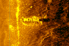 Nelson-Sonar-Image-Bow