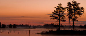 about_sen_dawn_kopp_seney_sunset